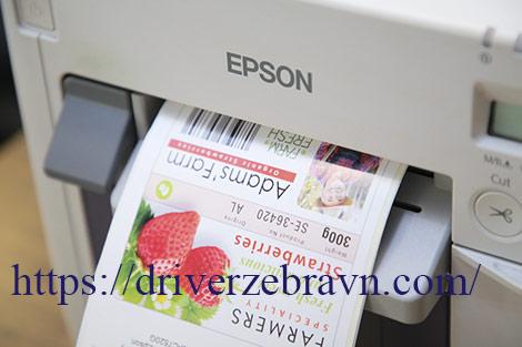máy in mã vạch màu Epson TM C3510